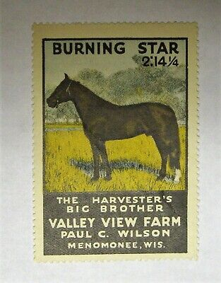 """Cinderella 1934 """"VALLEY VIEW FARM""""  BURNING STAR    MENOMONEE, WISCONSIN, used for sale  Shipping to Canada"""