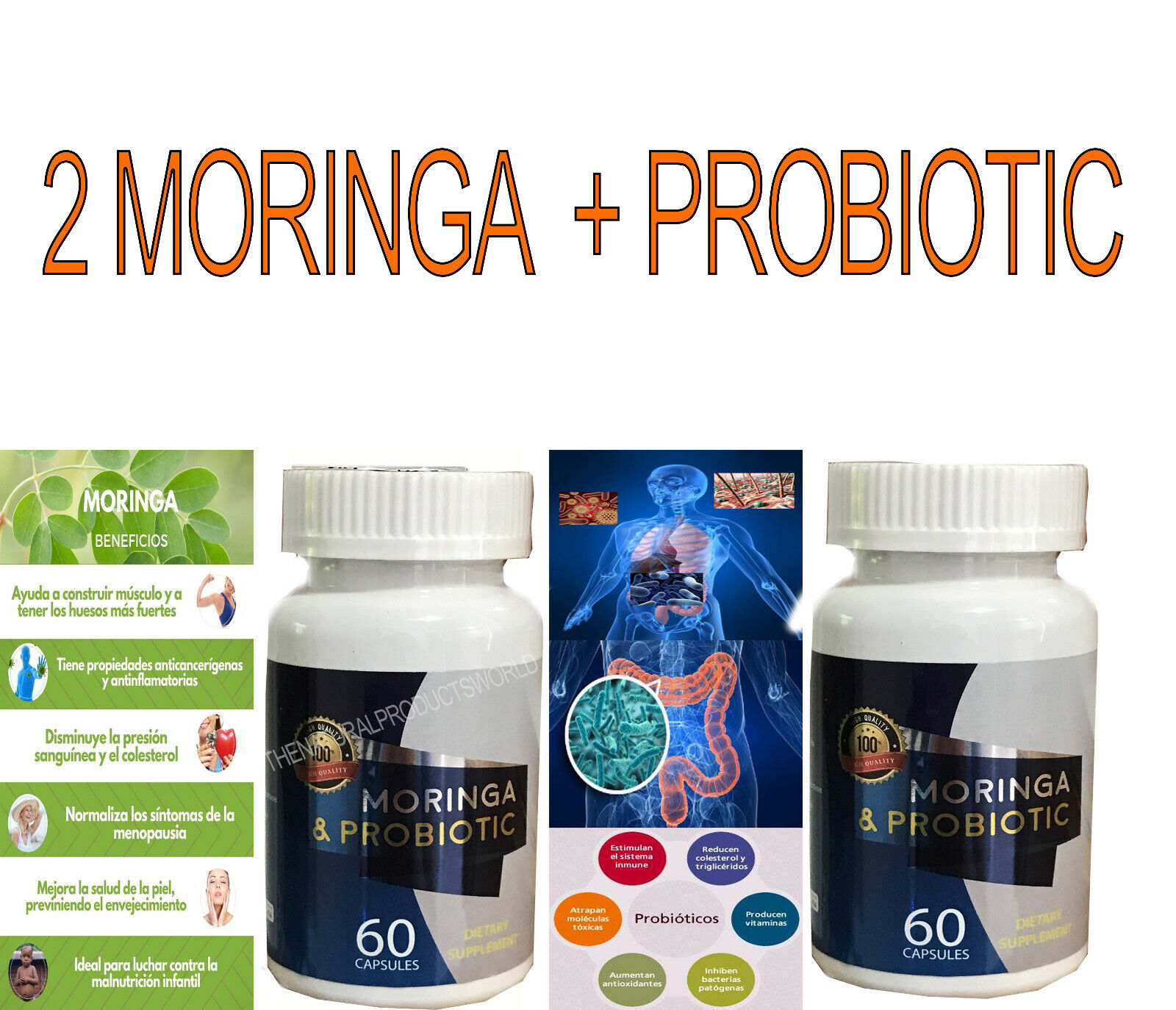 Probiotic + Moringa Bacticontrol Cell Support Bacterium Cure Biotrix  Bacti