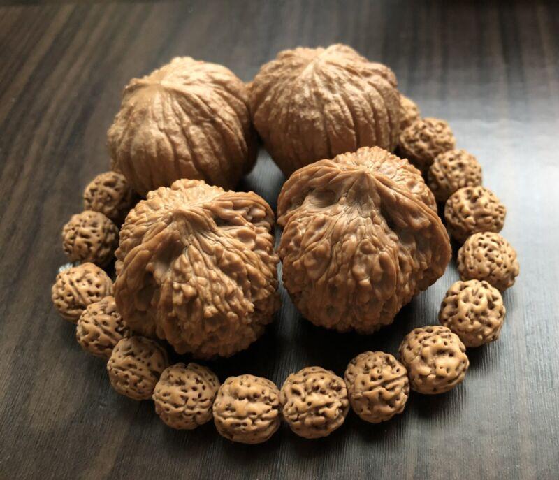 Rudraksha bracelet. Chinese walnut..Hedgehong walnut 练手文玩三件套