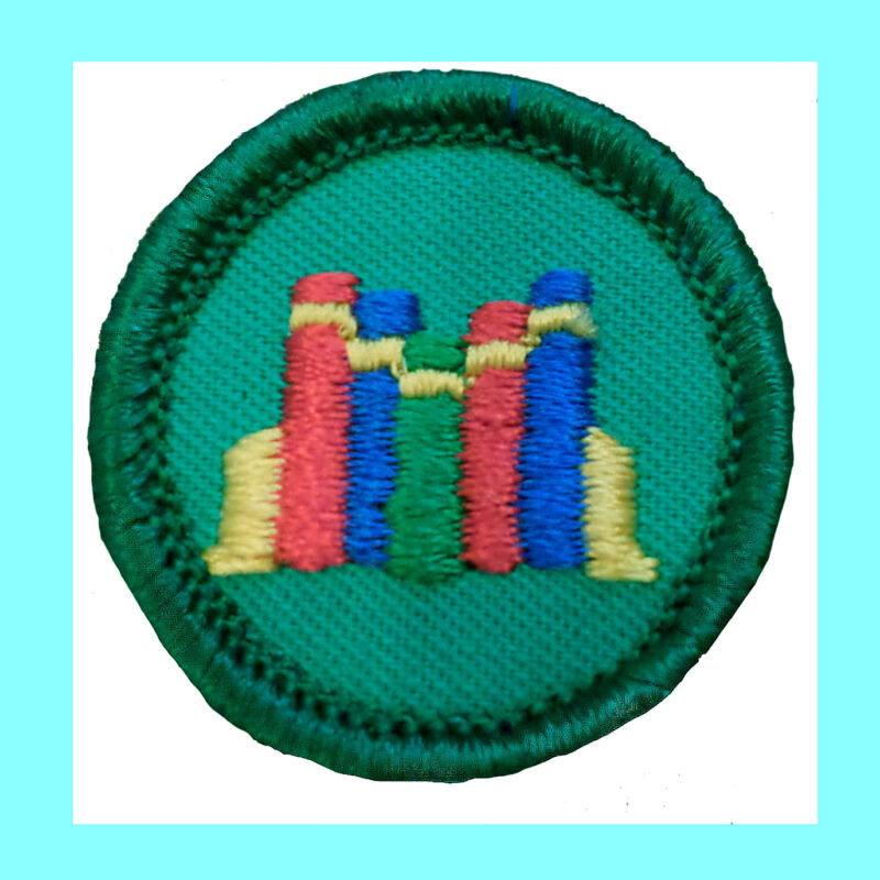 BOOKS Junior Jade Girl Scout Badge Patch 2001 NEW Read Library VOLUME DISCOUNT