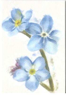 Easter Verses For Cards (Blank Verse Card For All.Forget Me Not Flower Birthday,Get Well,Thanks,)