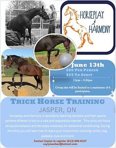 Introduction to trick horse training clinic May 13th