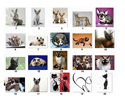 30 Personalized Return Address Labels Cats. Buy 3 Get 1 Free Cat1