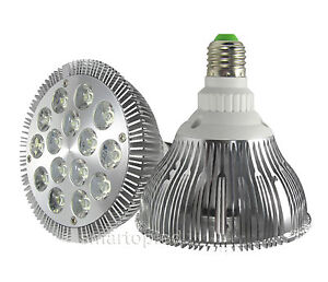 Best Selling in LED Light Bulbs