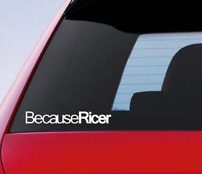 Because Ricer Sticker Funny Car Window Bumper Drift JDM Decal