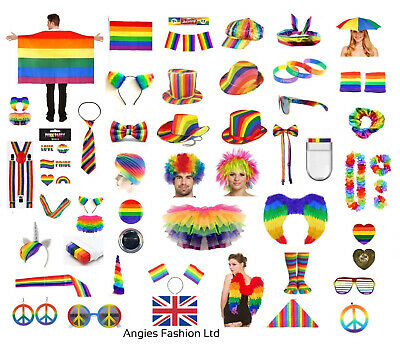 GAY PRIDE FANCY DRESS RAINBOW CLOWN LGBT PARADE PARTY ACCESSORIES LOT ALL IN 1
