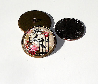 Birds Roses Cage Glass Dome Button handcrafted collectible shank sew or pin on