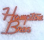 Hampton Brothers Tonewood Store