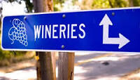 Winter Wine Tours and/or Sightseeing