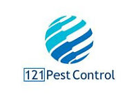 Pest Control South London and Croydon - Bedbugs, Cockroaches, Mice, Fleas, Wasps