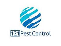 Pest Control London and Croydon - Bedbugs, Cockroaches, Mice, Fleas, Wasps