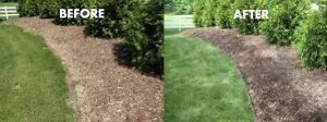 Flower bed cleaning / sod installs