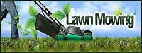 In Need Of Lawn Care? We Can Help