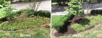 LANDSCAPING TREE REMOVAL GUTTER CLEANING AND GUTTER REPAIR HANDY