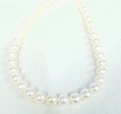 """* UNSTRUNG 16"""" STRAND OF 9 - 9 1/2MM FRESHWATER PEARLS W/ NO LOCKS"""