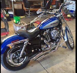 2009 Harley custom sportster