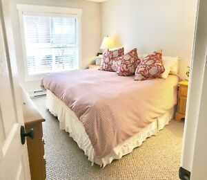 Furnished Oak Bay/Fernwood border 6 month rental Aug 16-Feb 16