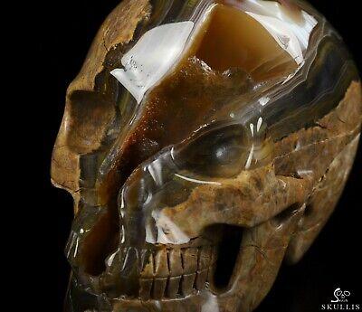 "GOOD QUALITY 5.0"" DINOSAUR EGG AGATE Carved Crystal Skull, Crystal Healing"
