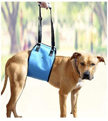 Dog Lift Harness by AMZpets- Support Sling Helps Dogs w  Limited mobility Large