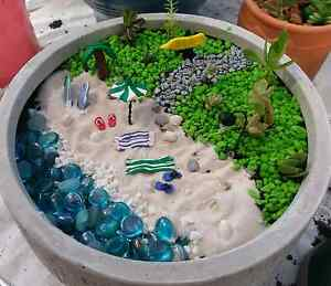 fairy gardens Charlestown Lake Macquarie Area Preview
