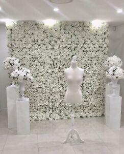 Flower wall Merrylands Parramatta Area Preview