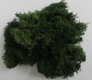 Foliage Lichen Moss for Model Trees Bushes Hedges 50g bag - Choice of Colours