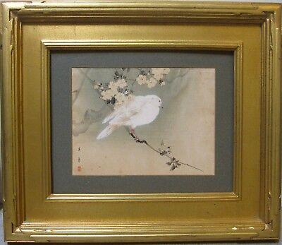 HOTEI GOSEI Original Signed Woodblock Pigeon Bird 19th Century Japanese Antique