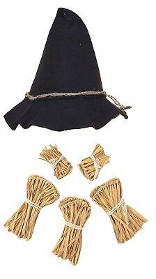 Adult Scarecrow Hat Deluxe Felt Oktoberfest Wizard of Oz Hillbilly Hat Costume