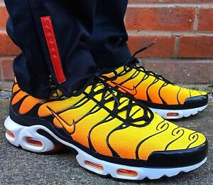 Looking for air max TN