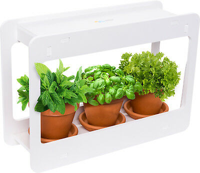 Mindful Design White LED Indoor At Home Mini Window Planter Herb Garden Kit