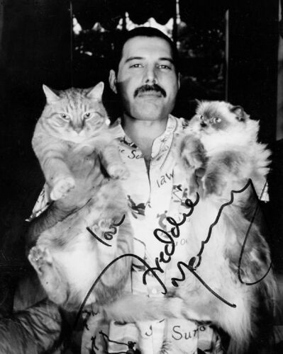 """Beautiful Freddie Mercury"" - Queen - Signed 8 x 10 Photo Reprint"