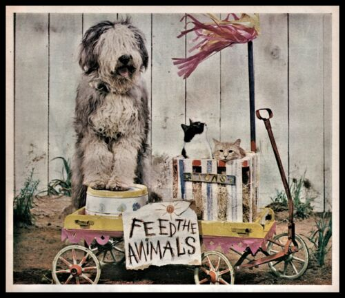 1963 OLD ENGLISH SHEEPDOG Feed the Animals Wagon FABULOUS Vintage Photo Steel AD