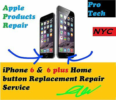 Apple Iphone 6   6 Plus Home Button Repair Service   Without Touch Id