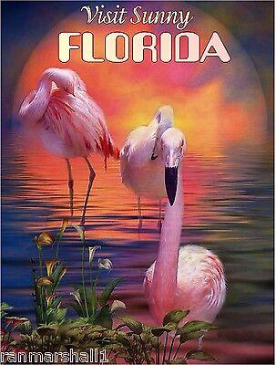 Florida Flamingo Bird America Original Travel Advertisement Poster By Shaynamar