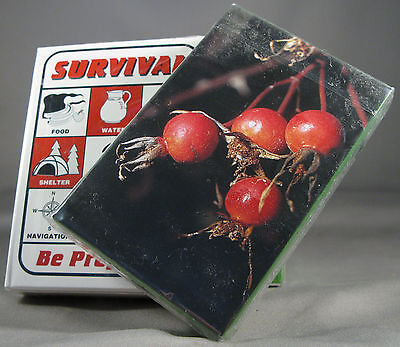 Survival Playing Cards + Plant ID Deck Bushcraft Survival Kit Zombie Disaster W
