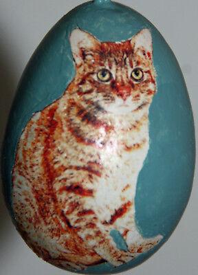 gourd Easter egg, garden or Christmas ornament with orange tabby cat