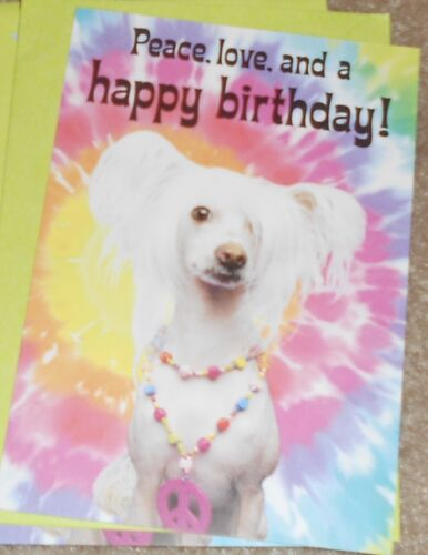 Set of 3- Hallmark 😎 CHINESE CRESTED DOG Birthday Cards PEACE GROOVY New HIPPIE