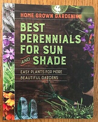 Best Perennials for Sun and Shade Easy Plants Gardens Home Grown Gardening (Best Perennials For Sun)