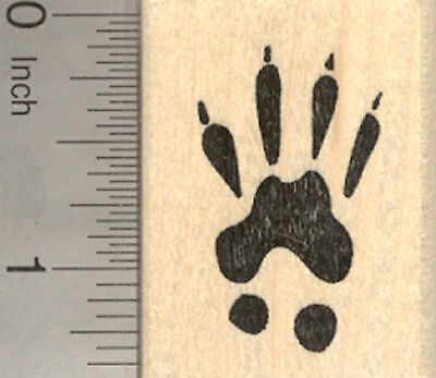 Squirrel Paw Print Rubber Stamp, Animal Tracks D23014 WM (Animal Tracks Rubber Stamps)