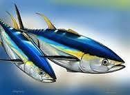 BlueOceanFishing