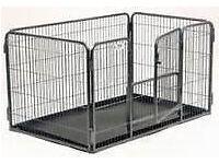 Crufts Puppy Crate