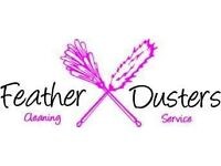 Domestic and commercial cleaners