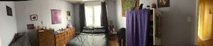 Central Hfx Sublet available May 2017