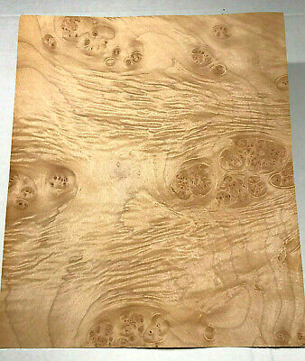 Maple Burl Raw Wood Veneer Sheets 9.5 X 11.5 Inches 142nd Thick  H7684-22