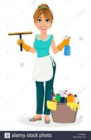 SilverFox Seniors cleaning and home service