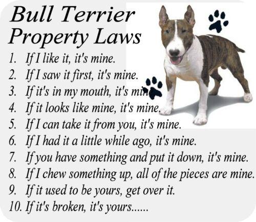 MOUSEPAD - Bull Terrier Dog Breed - Computer Desktop / Laptop / Gaming Mouse Pad