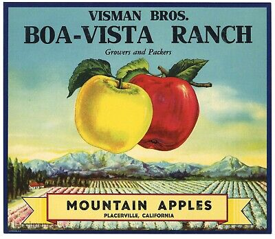 BOA VISTA Brand, Vintage Placerville, *An Original APPLE Fruit Crate Label* B08