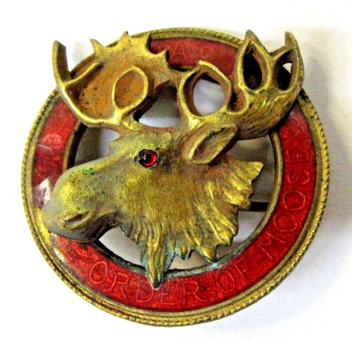 early MOOSE LODGE Fraternal enamel inlaid brooch pinback button +