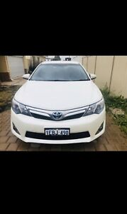 TOYOTA camry hybrids available for lease starting from $250
