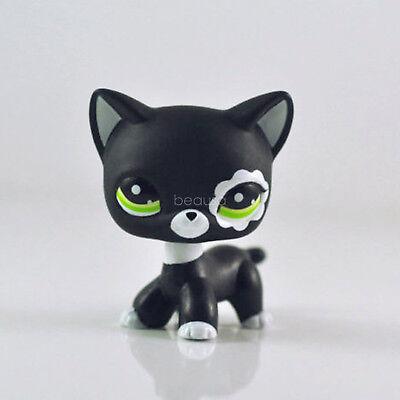 "Rare Littlest Pet Shop LPS Collection Shorthair White Black Kitty Cat 2"""